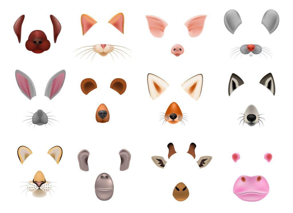 Filtros animales para tu filtro de instagram