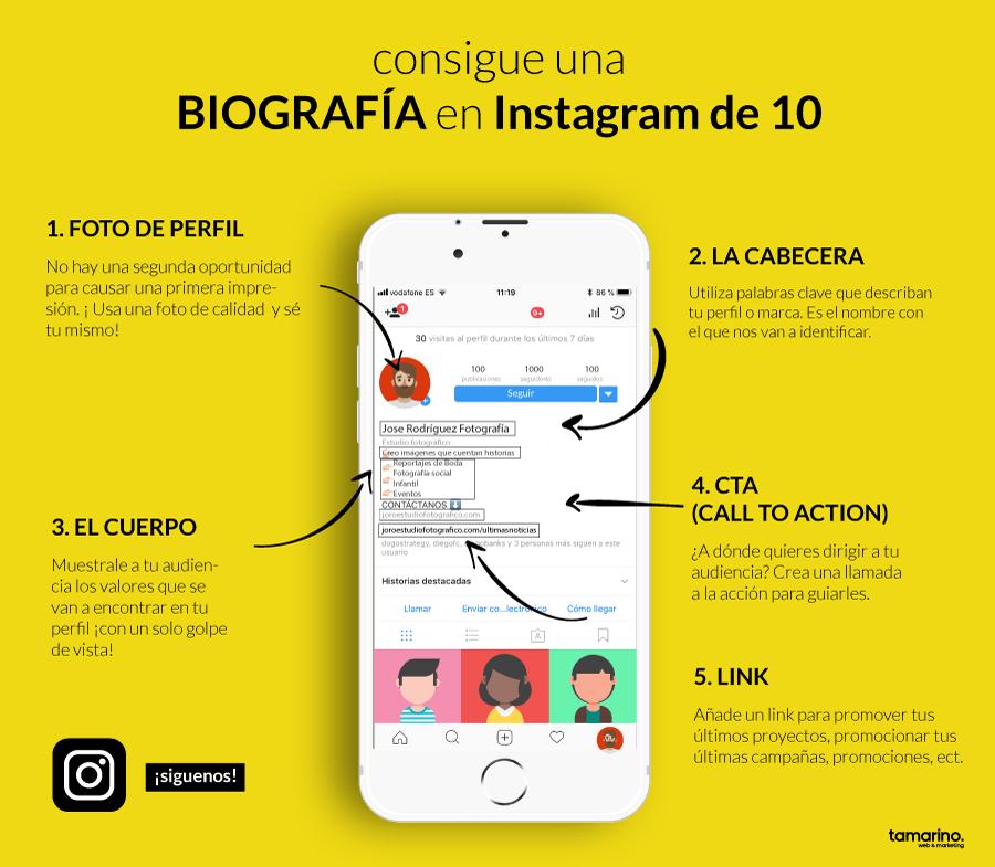 Infografía sobre tips importantes para una biografia impactante en Instagram