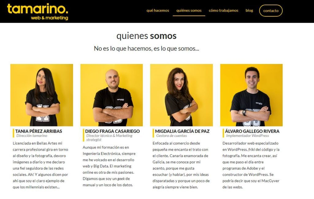 Equipo de Tamarino web & Marketing