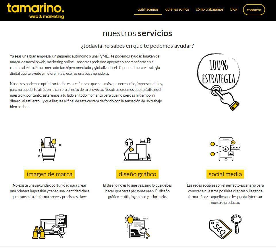 Servicios que ofrece Tamarino web & Marketing